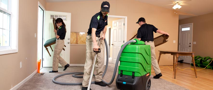 Rochester, MN cleaning services